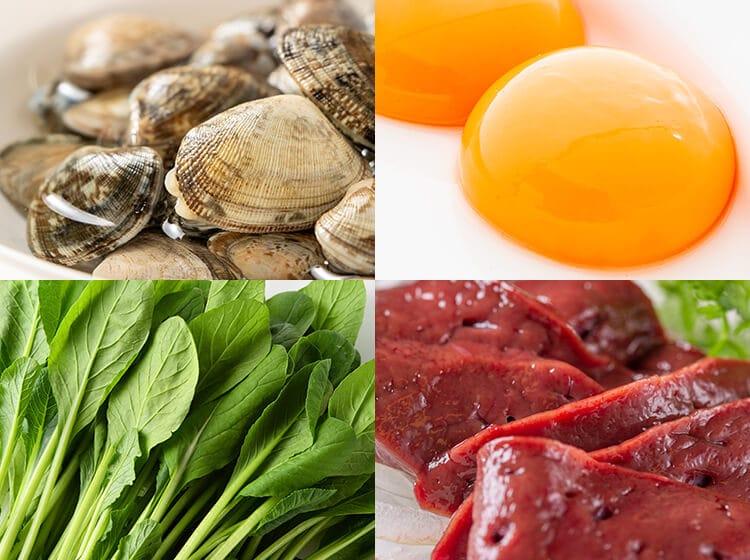 鉄分を補う食材イメージ